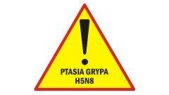 Uwaga, Ptasia grypa H5N8